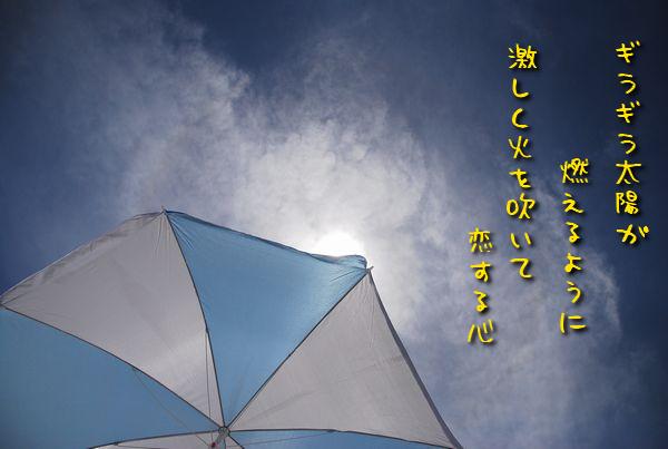 f0203612_11162137.jpg