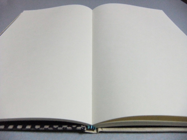 lleno(リエノ)・上製本ノート。_f0220714_036719.jpg