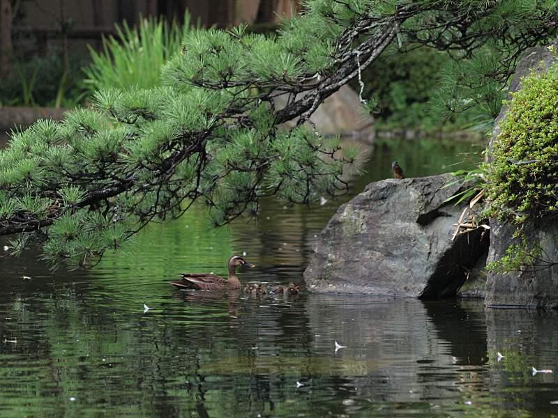U公園にて_f0051915_0354062.jpg