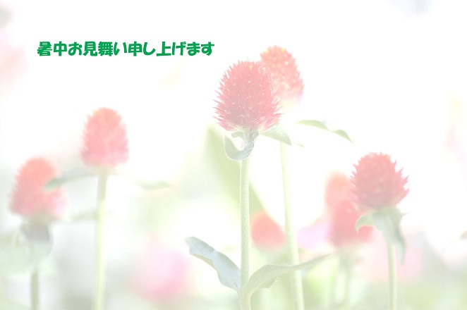 f0157215_7231297.jpg