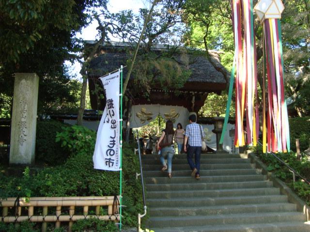 東京三鷹 深大寺へ行く。_f0232060_0102574.jpg