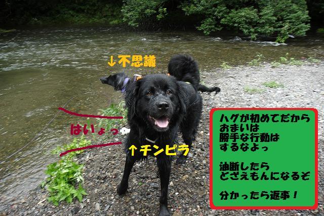 d0128364_15261272.jpg
