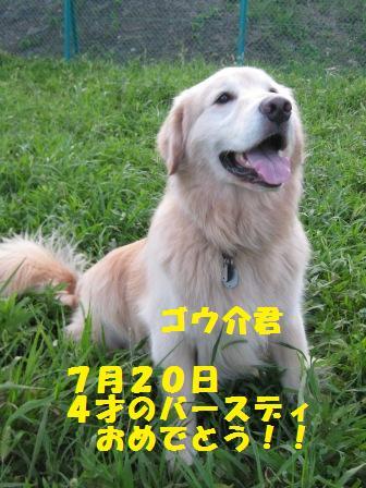 f0230380_20463766.jpg