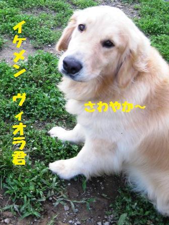 f0230380_20514867.jpg