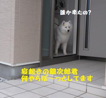 f0212597_223011.jpg