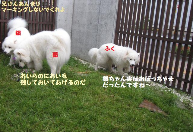 f0212597_2235238.jpg