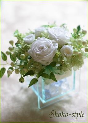 白いバラ_a0135999_01833.jpg