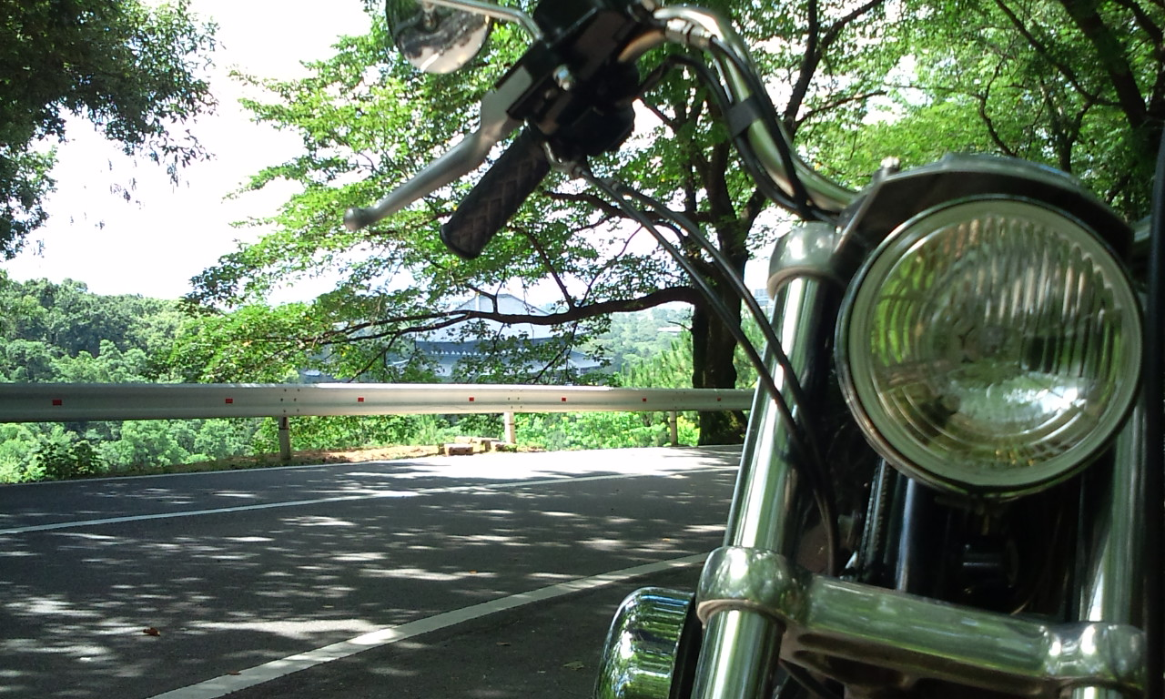 奈良~_f0213410_22431442.jpg