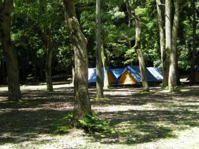 宮島探険サマ~キャンプ2010!!_e0036217_70136.jpg