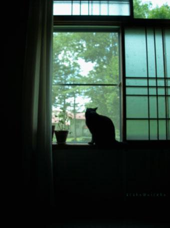 窓の風景_a0094336_22141174.jpg