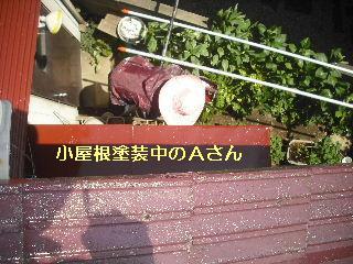 セメント瓦塗装工事_f0031037_21101059.jpg