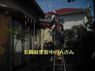 セメント瓦塗装工事_f0031037_21102144.jpg