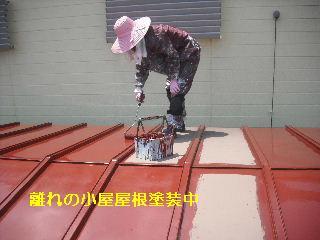 セメント瓦塗装工事_f0031037_2110362.jpg