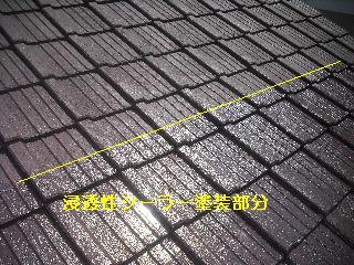 セメント瓦塗装工事_f0031037_2111207.jpg