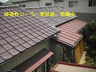 セメント瓦塗装工事_f0031037_2111526.jpg