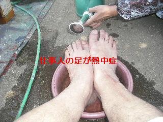 セメント瓦塗装工事_f0031037_21123160.jpg