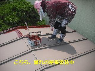 セメント瓦塗装工事_f0031037_2194517.jpg