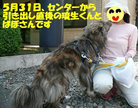 f0121712_15434947.jpg