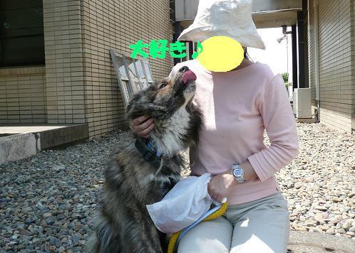 f0121712_1544314.jpg