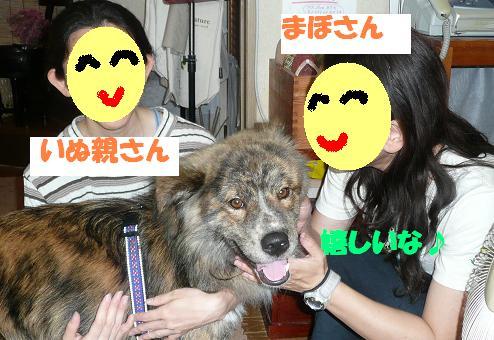 f0121712_16104898.jpg