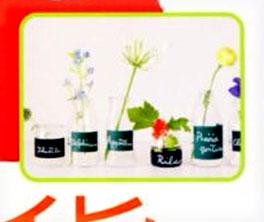 f0036716_1659743.jpg