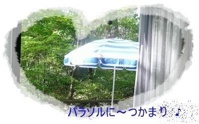 b0167519_8485213.jpg