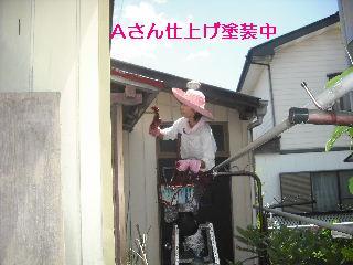 屋根塗装・・完成_f0031037_20432277.jpg