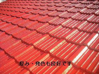 屋根塗装・・完成_f0031037_2046976.jpg