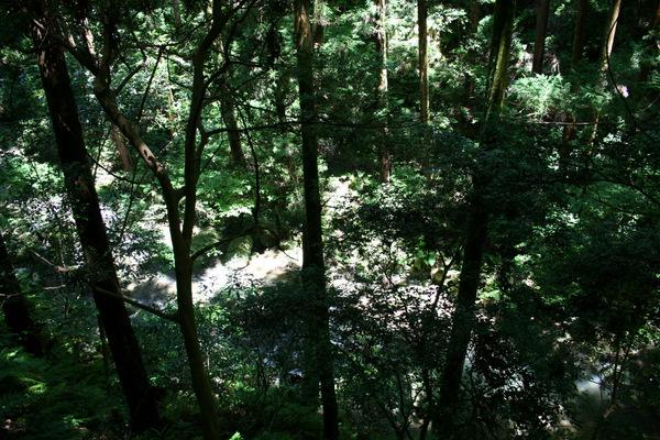 滝を見に箕面まで_b0168840_20112388.jpg