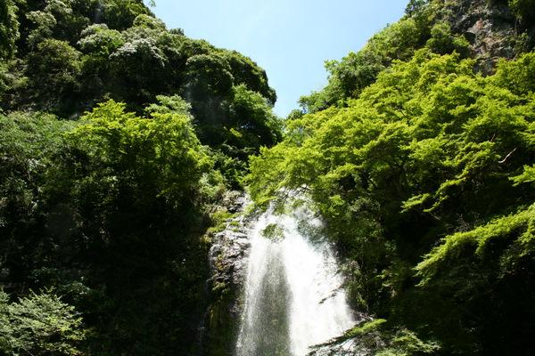 滝を見に箕面まで_b0168840_20123658.jpg