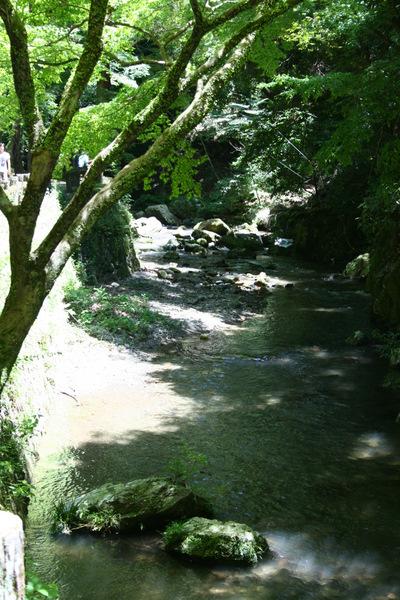 滝を見に箕面まで_b0168840_2073584.jpg