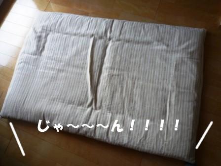 c0196992_1348969.jpg