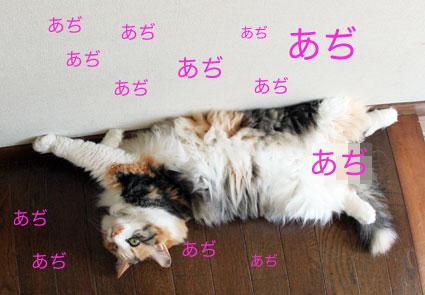 花火のツユだくご飯の食べ方(動画)_d0071596_0141919.jpg