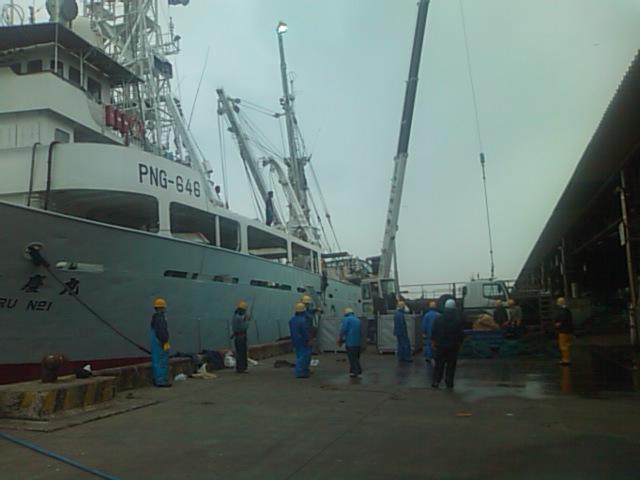 石巻魚市場整備と水産業の活性化を視察_e0068696_905970.jpg