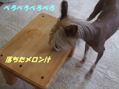 f0179203_14124273.jpg