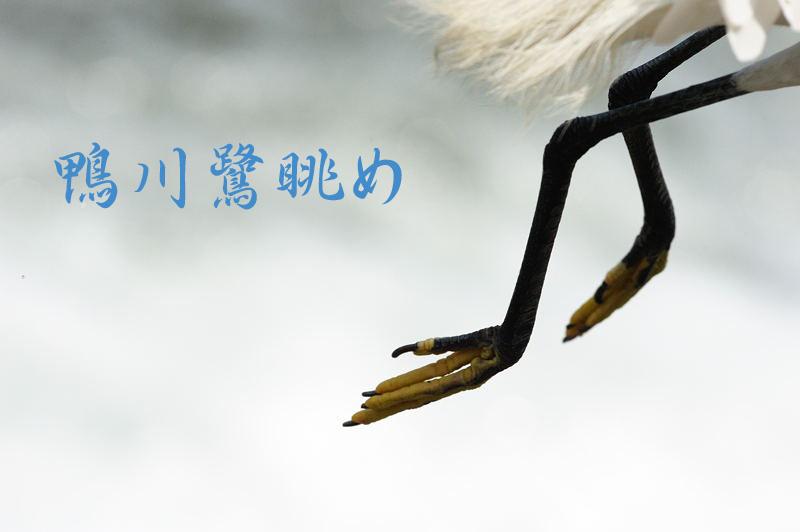 f0032011_1523876.jpg