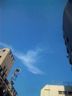 夏は夏らしく_a0103940_17154514.jpg