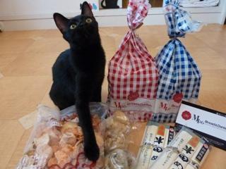 神戸からの愛猫 ろった編。_a0143140_1613133.jpg