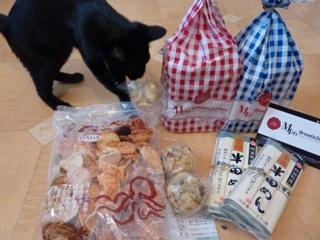 神戸からの愛猫 ろった編。_a0143140_1623039.jpg