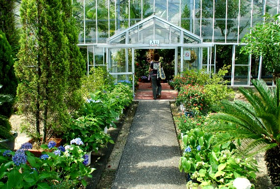 和歌山県植物公園緑花センター _b0093754_23464499.jpg