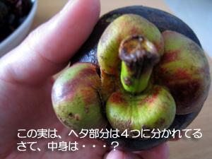 f0144385_17131816.jpg