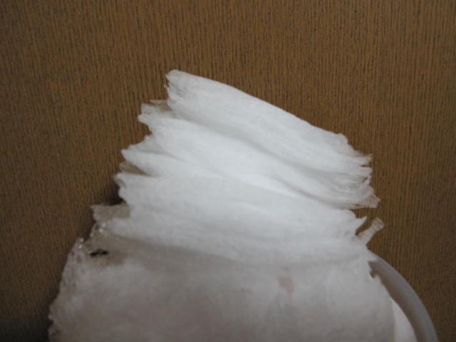 氷!_e0177101_22173828.jpg