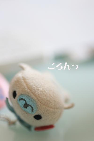 d0133205_5573775.jpg