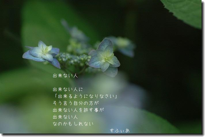 b0152416_2025564.jpg
