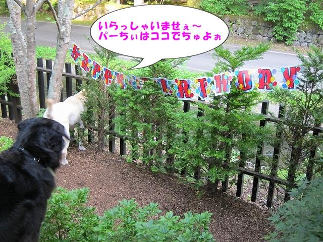Happy Birthday 2_e0192217_113752100.jpg