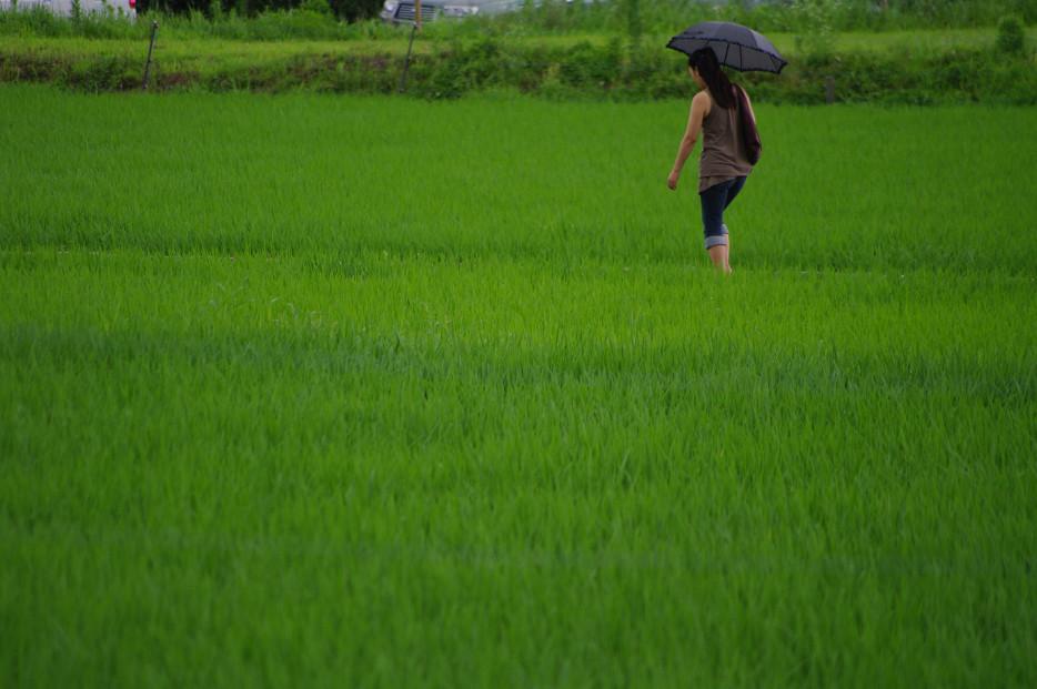 田園で何を撮る..._f0152550_1711717.jpg