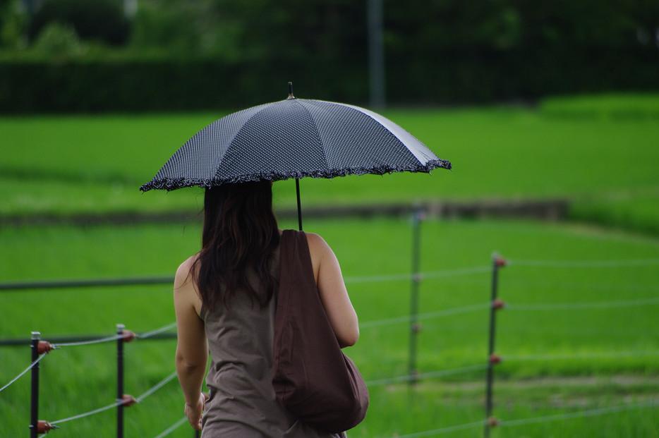 田園で何を撮る..._f0152550_17147.jpg
