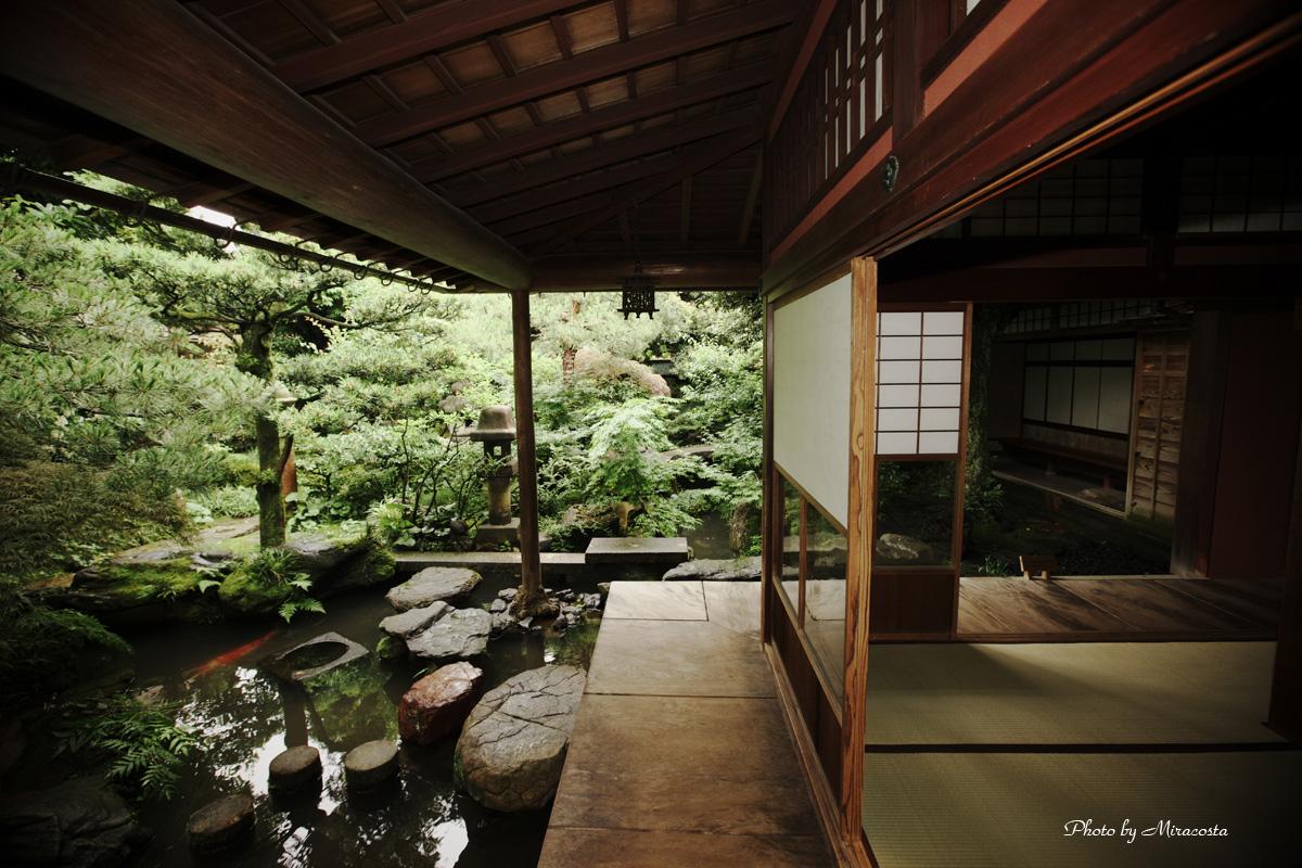 うちの庭_e0140159_1431497.jpg