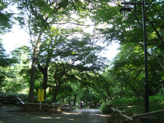 吉祥寺「井の頭自然文化園 分園」に行く。 ①_f0232060_14422645.jpg