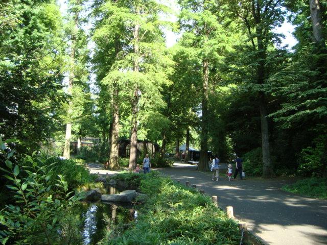吉祥寺「井の頭自然文化園 分園」に行く。 ①_f0232060_14451276.jpg